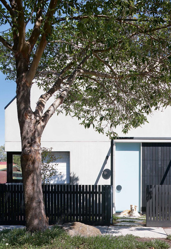 """""""We bought a run-down, double-fronted Victorian house and lived here for four years,"""" he says. """"It was always our intention to subdivide, build two townhouses, live in one and sell the other.""""<br><br>**Exterior** As the townhouse is in an area with a heritage overlay, George and Lisa Fortey's home had to match nearby properties. The steel pergola aligns with the [verandahs](https://www.homestolove.com.au/country-verandahs-13365