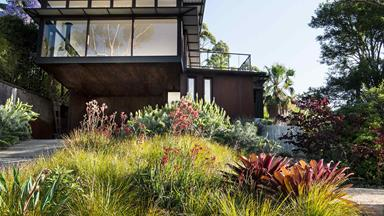 A coastal hilltop garden that embraces Australian natives