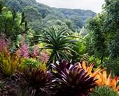 Belle Australian Landscape Designers book