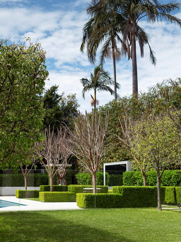 Investing in fast-growing evergreens, clipped species and symmetrical planting paid off for garden designers Annie Wilkes and the owners of this lush Sydney Property. *Photograph*: Nicholas Watt. From *Belle* December/January 2018/19.