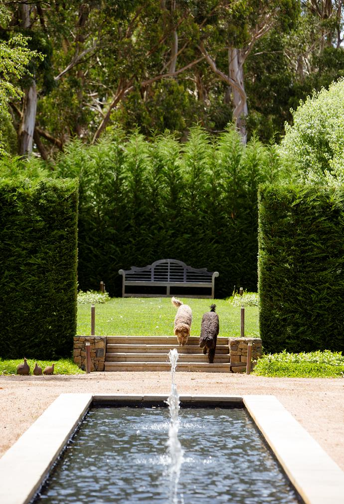 "Tall walls of Leighton Green cypress are used extensively to frame various rooms within this garden designed by Peter Fudge. *Photograph*: Jason Busch. From the *[Belle Australian Landscape Designers](https://www.homestolove.com.au/belle-australian-landscape-designers-book-19878|target=""_blank"")* book."