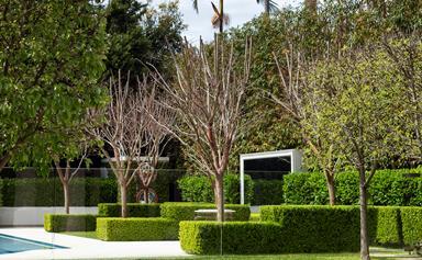 10 landscaped Australian gardens