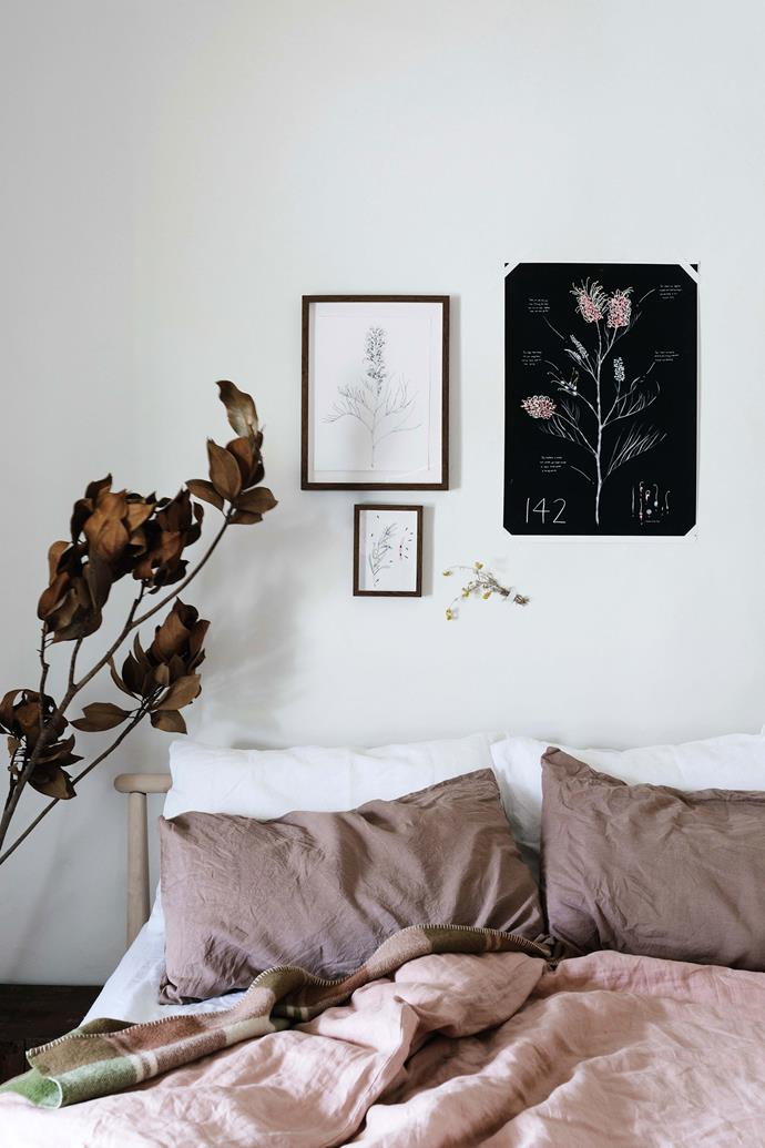 An assortment of botanical prints by Blue Mountains artist Edith Rewa.