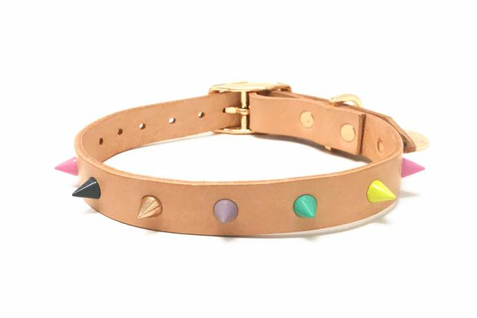 "'Spike' leather collar in Pastel Party, $42, [Nice Digs](https://www.nicedigs.com.au/|target=""_blank""