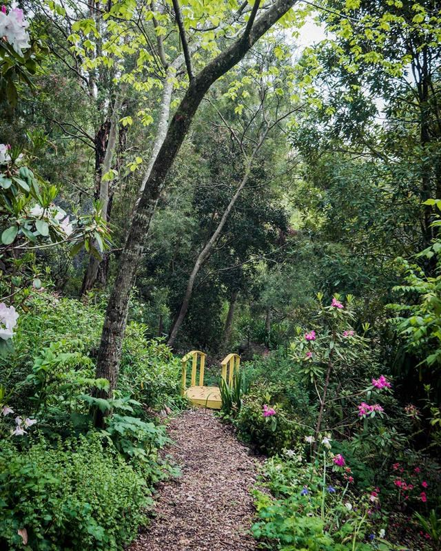 """This vivid yellow-painted bridge defines the path weaving through the [massed planting](https://www.homestolove.com.au/blue-mountains-cool-climate-garden-19174