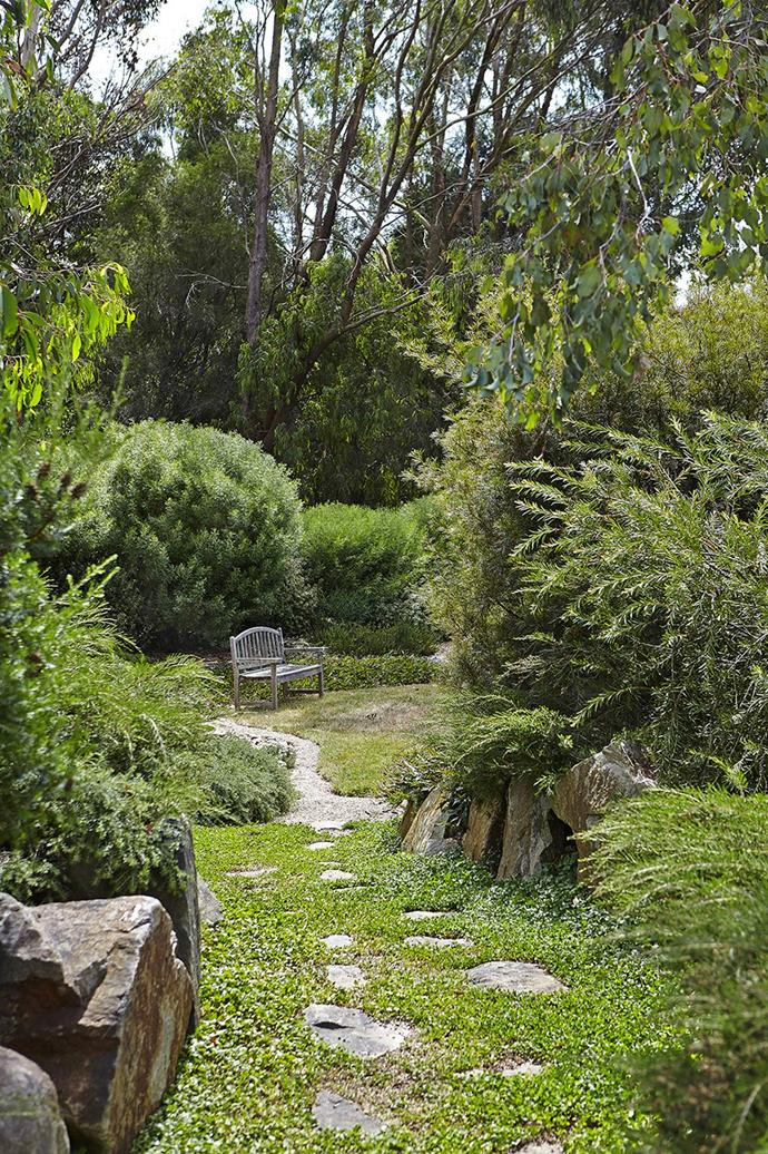 Part country, part coastal, this expansive garden on Victoria's Mornington Peninsula uses beds of native  plants. Native shrubs are pruned lightly into rounded forms.