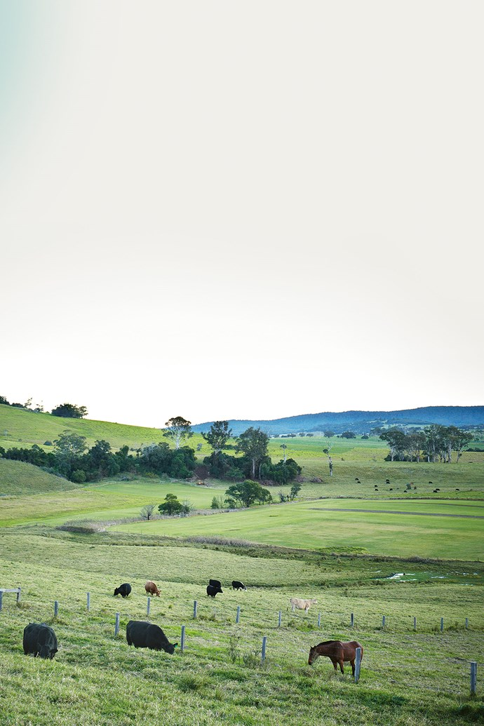 Fertile farmland surrounds Milton on the NSW South Coast.