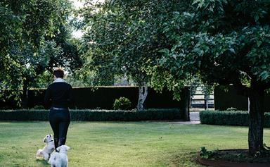 A horse rider's formal country garden at Hanging Rock