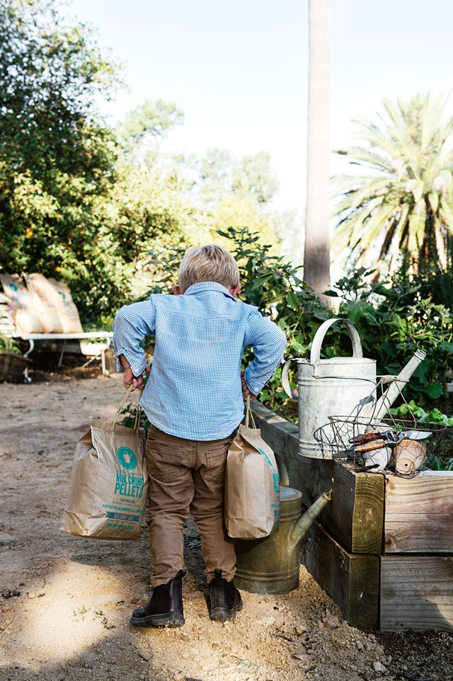 To get started, choose a sunny spot in the garden and begin nourishing the soil.