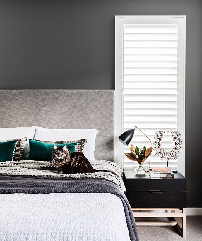 This transitional bedroom calls for timeless plantation shutters in bright white to create contrast against the dark charcoal walls. *Image: Maree Homer / bauersyndication.com.au*