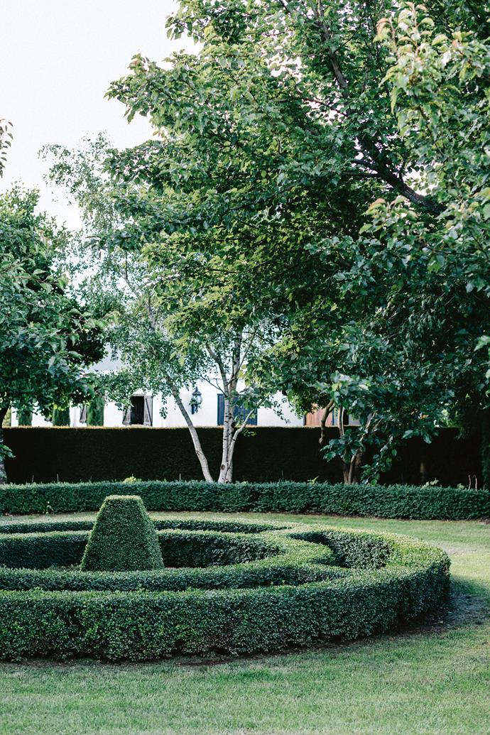 The rear of Meaghan Willis's Jimsbury Park property shows her preference for formal gardens. An existing trellis fence, now covered with maidenhair creeper, encloses  a circular parterre of clipped box.