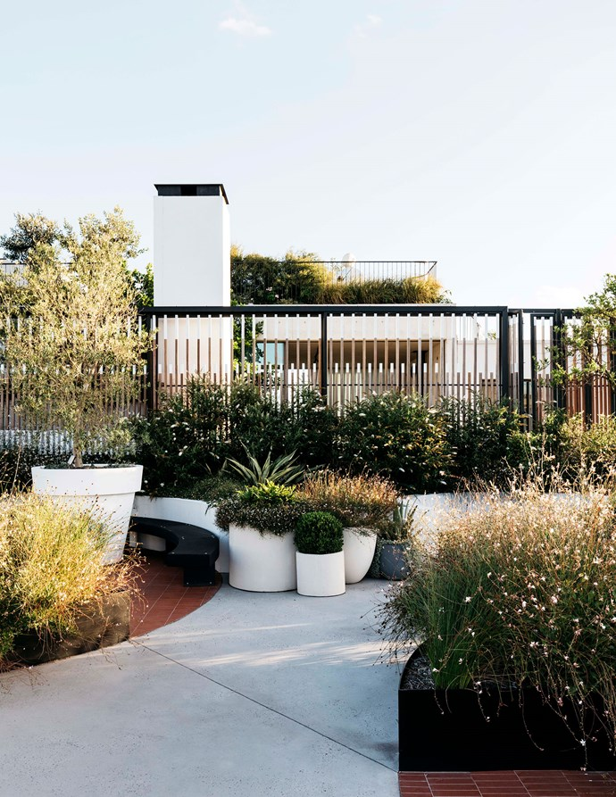 """<p>**ROOFTOP GARDEN**<p> <p>Rooftop gardens, while the peak of luxury apartment living, present a unique challenge when it comes to design. Not only is it important to get the basics right, it's also important to think about how you're going to get the plants up there! Landscape designer Michael Bates of [Bates Landscape](https://bateslandscape.com.au/ target=""""_blank"""" rel=""""nofollow"""")  agrees, saying """"Getting the materials up onto the roof [is] a difficult logistical exercise in its own right."""" But the end result is oh so worth it, as this [rooftop garden at a Sydney apartment](https://www.homestolove.com.au/a-rooftop-sydney-apartment-and-garden-5877 target=""""_blank"""") designed by landscape architects at [Black Beetle](https://www.blackbeetle.com.au/ target=""""_blank"""" rel=""""nofollow"""") proves.<p> <P>*Photo: Felix Forest / Story: Belle* <p>"""