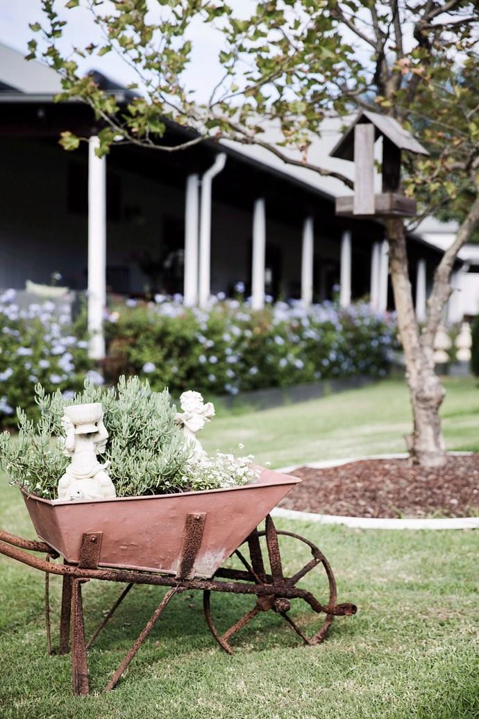 An old wheelbarrow makes for a quaint, portable raised garden. *Photo: James Henry / bauersyndication.com.au*
