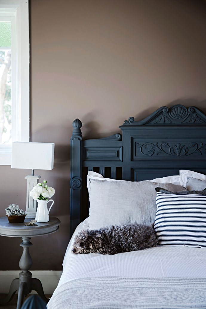 Louie the toy poodle enjoys a nap on the guest bed, which was painted with Porter's Paints Chalk Emulsion in Triple Lead. The wall colour is Taubmans Gaiety Tan.