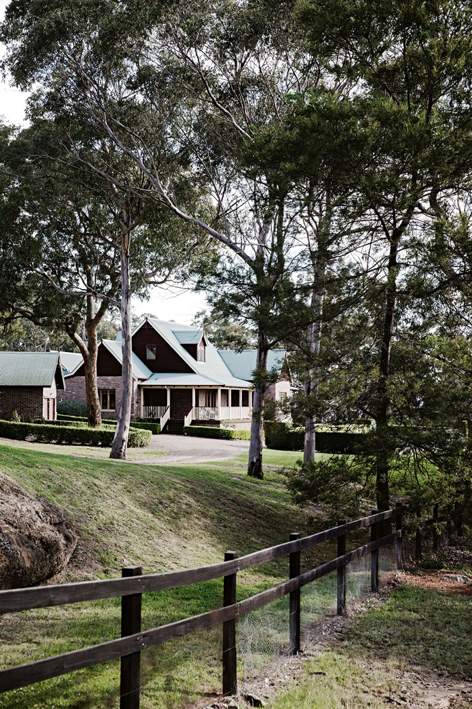 Gum trees line the driveway to the house.