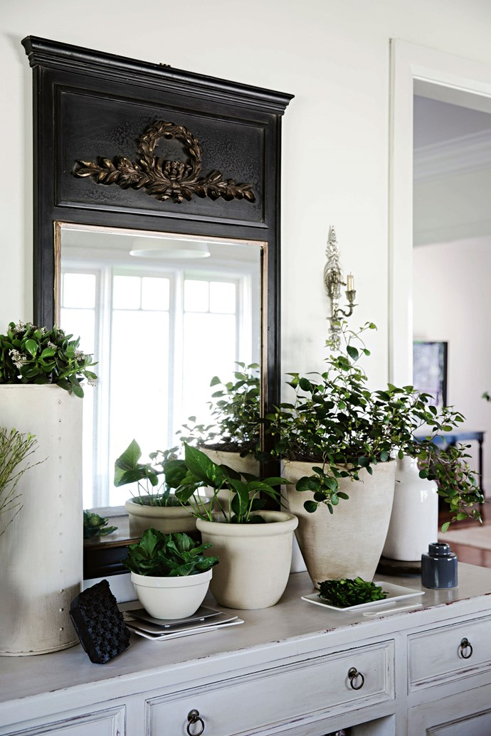 """""""I don't think I could live in a house without lots of greenery,"""" Heidi says. """"I never set out to collect urns, but I do have quite a lot."""""""