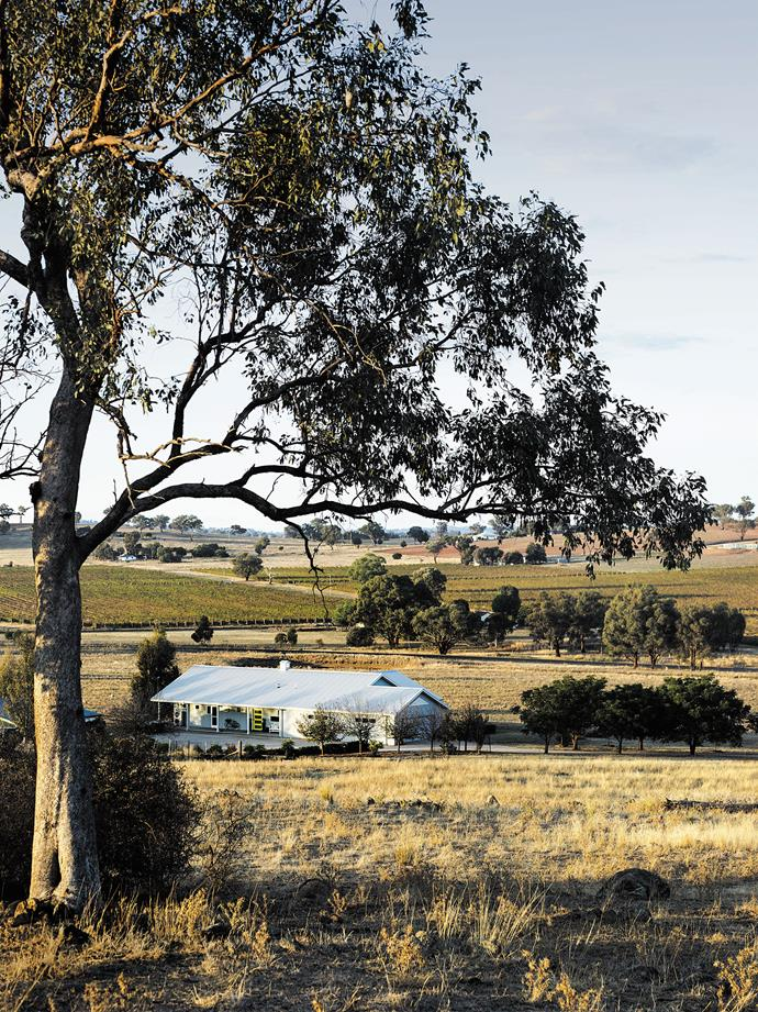 """Michael and Barbara Jeffery's homestead, clad in [Colorbond steel](https://www.homestolove.com.au/5-of-the-hottest-trends-for-house-exteriors-15867