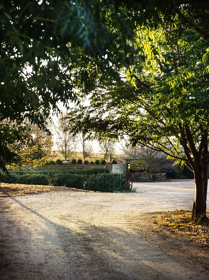 A sweeping gravel drive welcomes visitors and family.