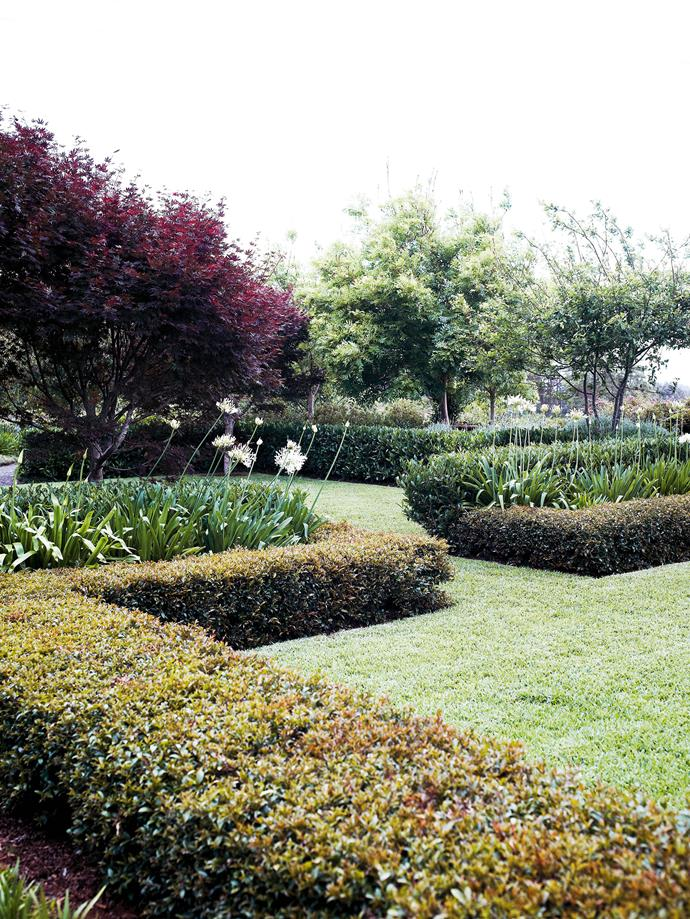 Emaho means 'wonderful, amazing' and it's an apt choice for this tree farm and country garden.