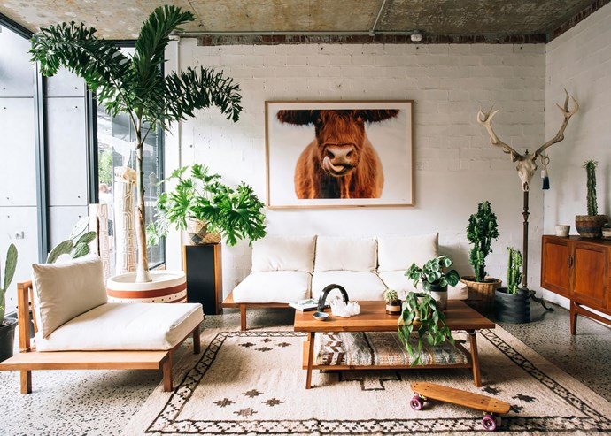 The Plant Room shows Finley sofas and Stoke coffee table by JD Lee Furniture. *Photograph*: Jack Bussell.