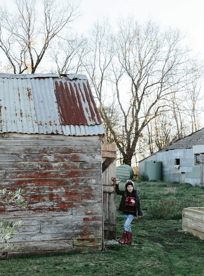 William explores the outbuildings. Stewart is restoring the old shed that bears the property's name.