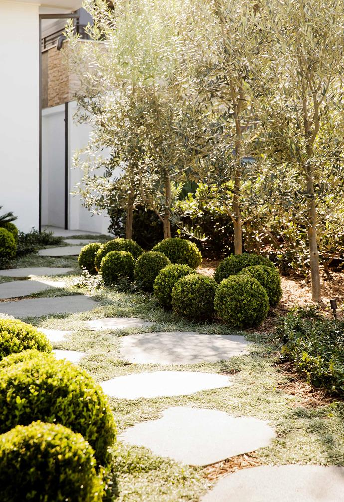 "**Pathway** Bluestone Organic pavers by [Eco Outdoor](https://www.ecooutdoor.com.au/|target=""_blank""