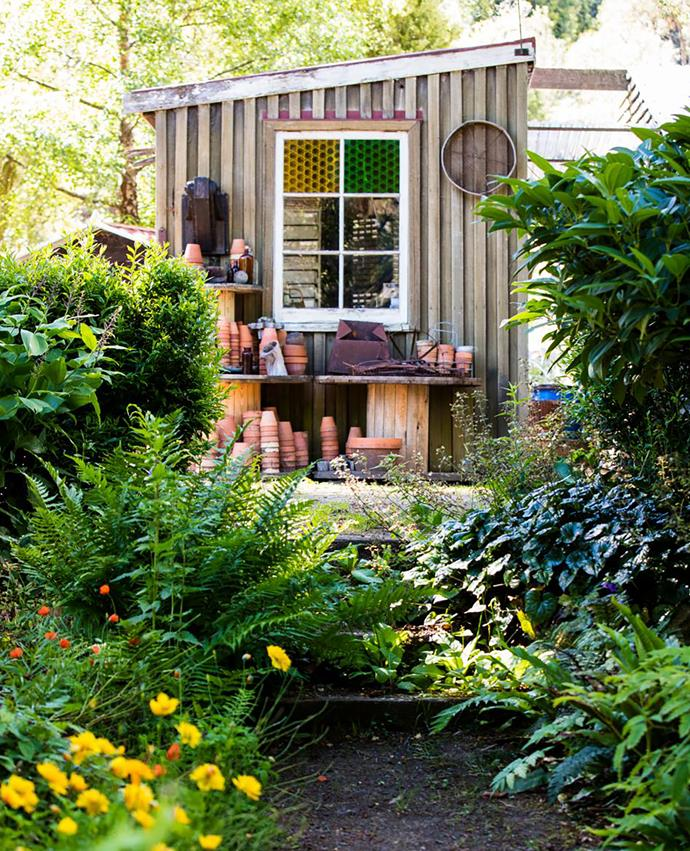 Sally's picturesque potting shed.
