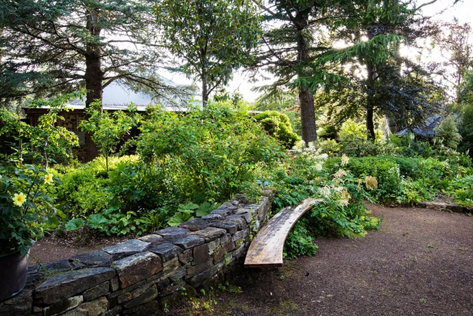 Curved walls and benches are a feature of the garden.