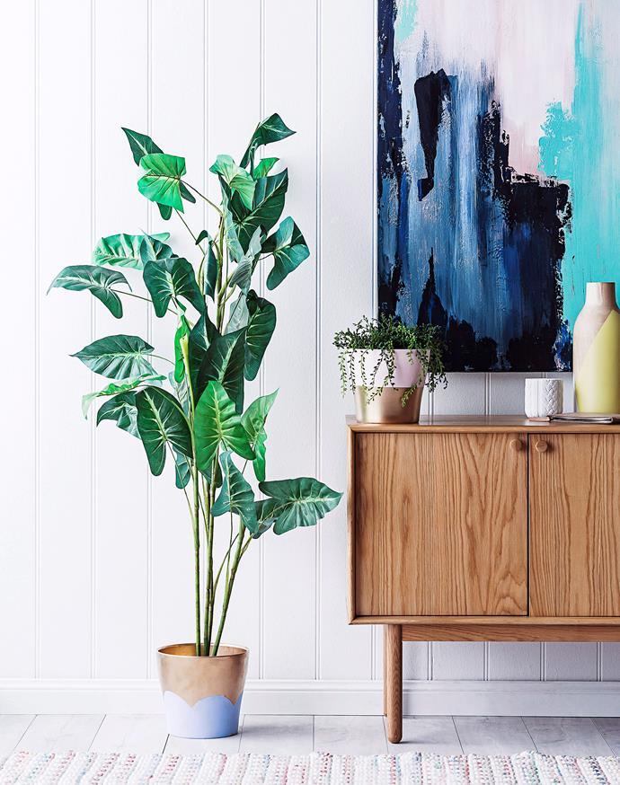 "Instead of spending up big on designer pot plants, with a bit of creativity and paint, you can update your existing pots for a fraction of the cost. [Here's how](https://www.homestolove.com.au/diy-painted-planter-4587|target=""_blank"")."