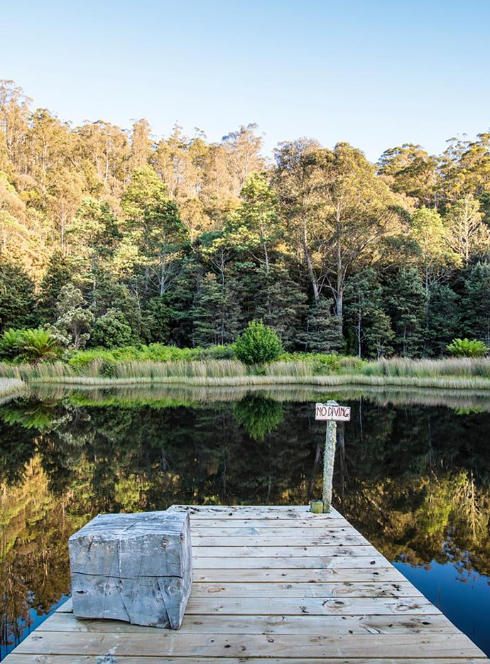 The property is in a natural amphitheatre, surrounded by native bush, including dense stands of woolly tea tree (Leptospermum lanigerum).