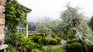 How to create a wild, naturalistic garden