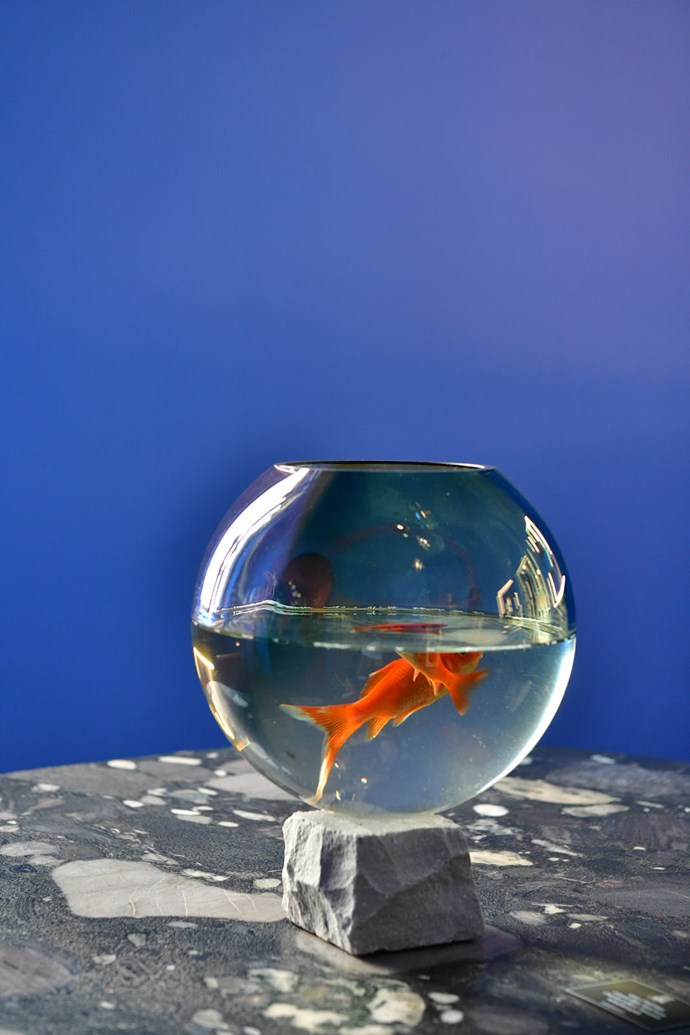 A chic fishbowl sits on a 'Fig' marble and mosaic granite table by Kunaal Kyhaan Seolekar.