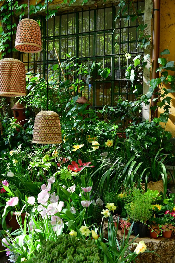 Thai basketry employed to fabulous effect by Pet Lamp, suspended above Rosanna Orlandi's beautiful spring garden.