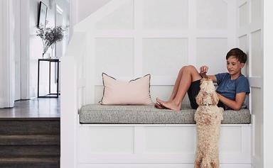 20 most popular dog breeds in Australia