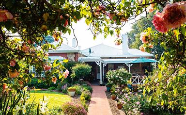 How much value does a rose garden add to your property?