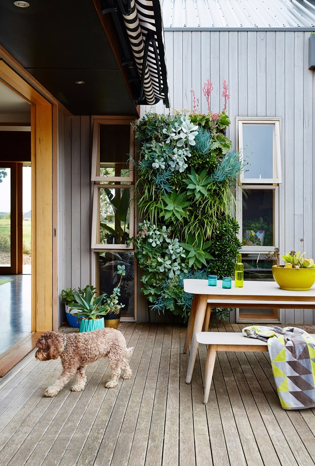 """Exposure to the elements – rail, hail and shine – will naturally weather your deck over time. While you can't completely prevent this, there's plenty you can do to protect and refresh your deck to keep it looking its best. [Restore your timber deck in time for summer with our step-by-step guide >](https://www.homestolove.com.au/restore-timber-deck-20013