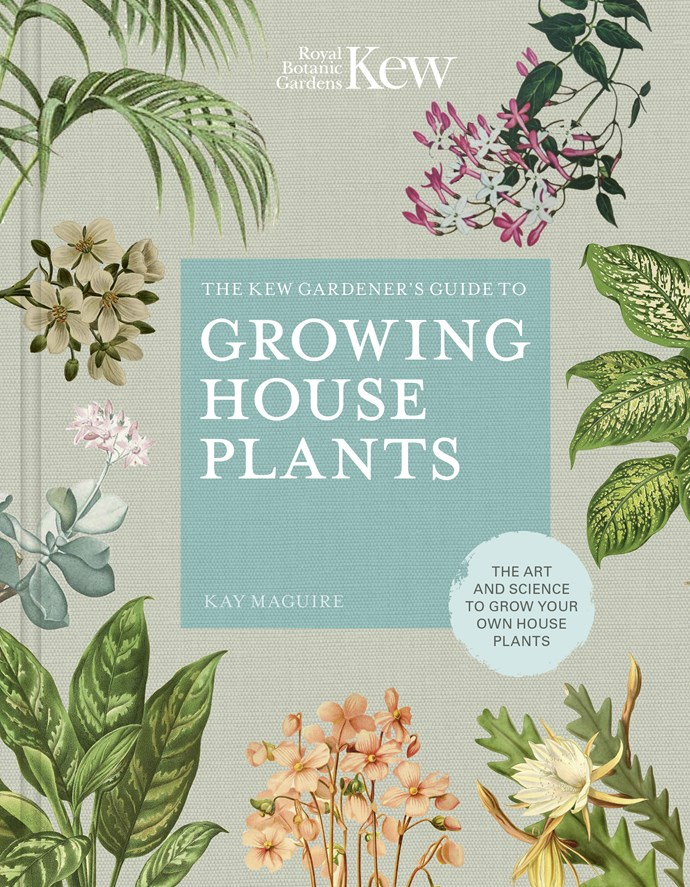 """*The Kew Gardener's Guide to Growing House Plants: The art and science to grow your own house plants* by Kay Maguire and Kew Botanic Gardens **book**, $20.40, from [Booktopia](https://fave.co/2IukkHG