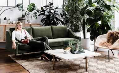 Indoor trees: the house plant trend taking greenery to new heights