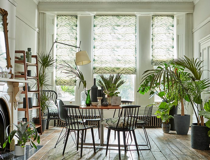 """This dining area has been brought to life with an abundance of beautiful indoor plants and fern-patterned Roman blinds. *Image: [Blinds Online](https://www.blindsonline.com.au?utm_source=homestolove&utm_medium=promoted&utm_campaign=homestolove-update-interiors-for-winter target=""""_blank"""")*"""