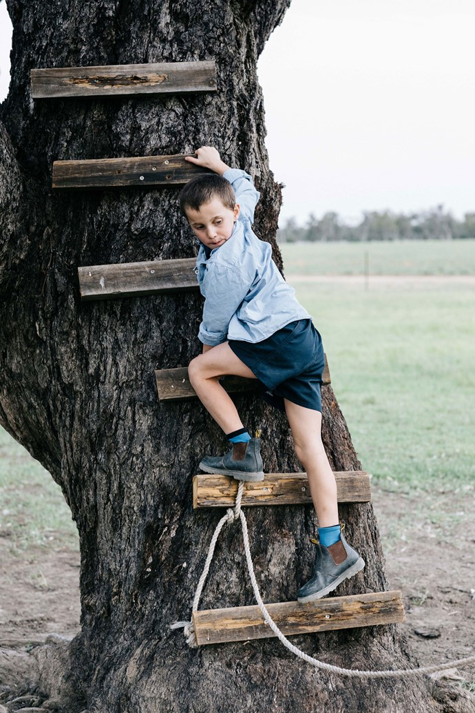 Tommy climbing up the rivergum.