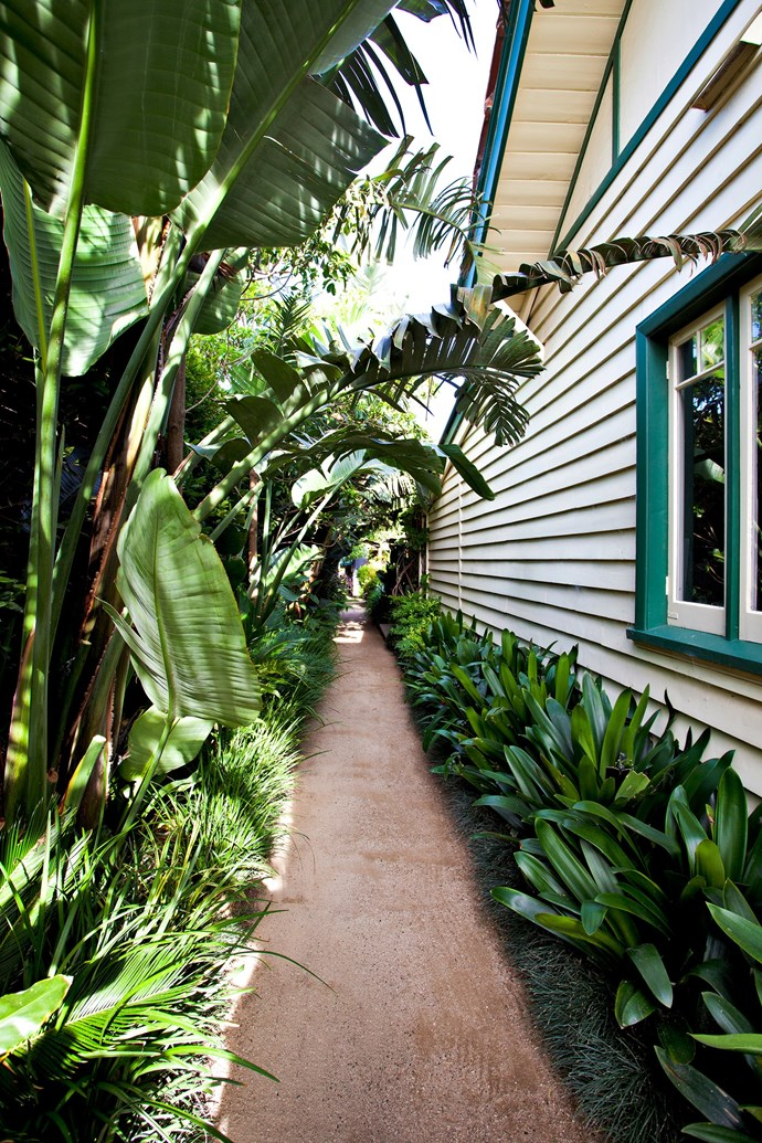 """Horticulturist [Hendrik Van Leeuwen's garden](https://www.homestolove.com.au/ripe-for-the-picking-a-productive-urban-garden-3508