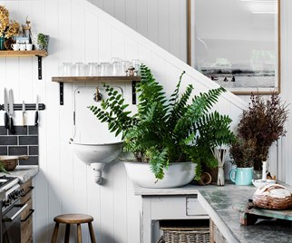 Enamel sink and basin used as a planter in a modern kitchen