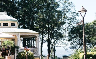 Things to do in Maleny and Montville on Queensland's Sunshine Coast