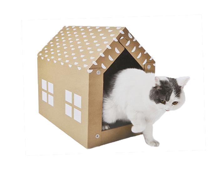 "Cat [scratcher house](https://www.kmart.com.au/product/cat-scratcher-house/2127367 target=""_blank"" rel=""nofollow""), $6."