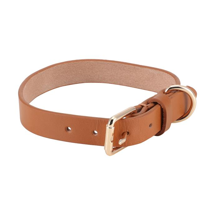 "Medium leather [dog collar](https://www.kmart.com.au/product/dog-collar-leather---medium/2532801|target=""_blank""
