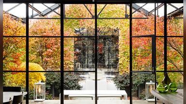 Inside landscape designer Paul Bangay's lush studio