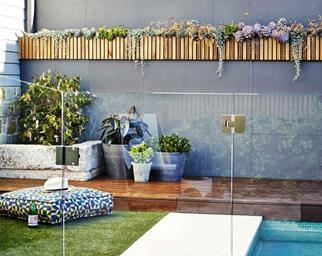 green wall ideas