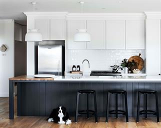 Modern country kitchen renovation with Border Collie in foreground
