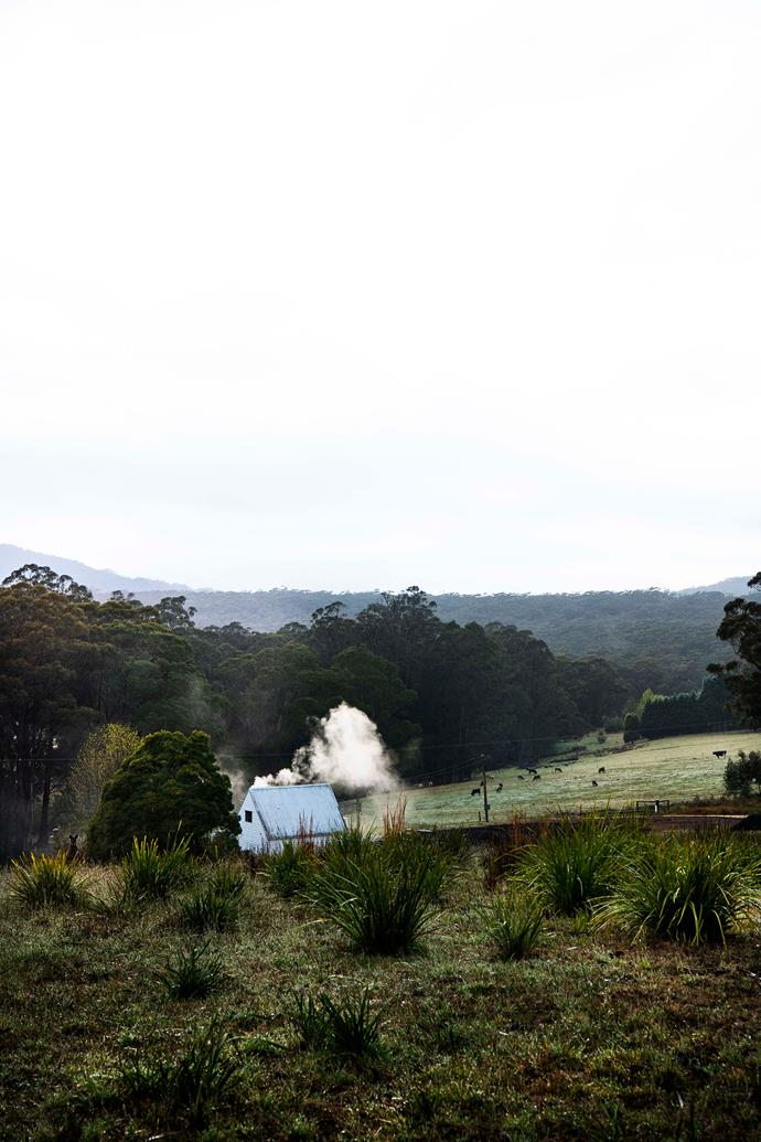 Brooke and Colin Munro's storybook-pretty home is surrounded by Morton National Park and neighbouring farmland.