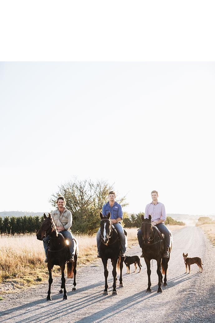 """<P>**THE ARCHIBALD AND THE BELL COUSINS**<p> <p>*Ride for a Cure, Mongol Derby*<p> <p>Four Australian polo players, Henry Bell and his cousins Jack, Rob and Ed Archibald took on the gruelling 1000 kilometre Mongol Derby across the Mongolian Steppe last year to raise awareness and funds for [MS Research Australia](https://msra.org.au/